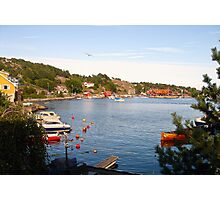 peaceful fjord Photographic Print