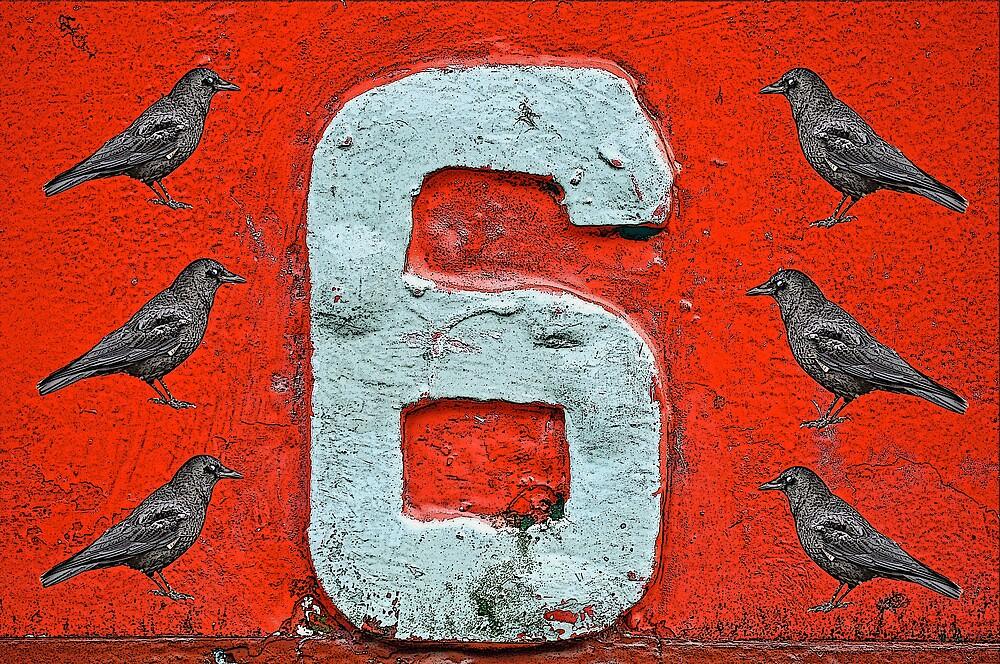 Six by jotwood