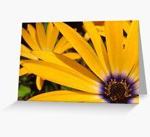 Sun Sprinkled Greeting Card