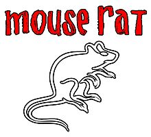 Mouse Rat by Merwok