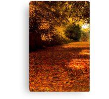 Autumns Carpet Canvas Print