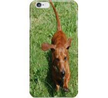 Happy Little Dachshund iPhone Case/Skin