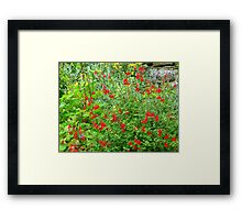 Inspirational Gardening Framed Print