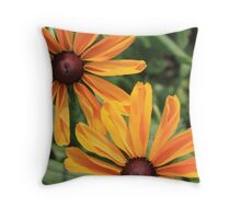 Sites of Summer Throw Pillow