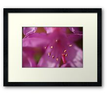 Wanting to touch Framed Print