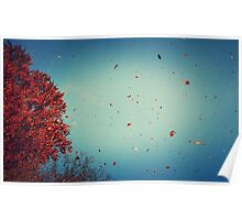 red leafs falling Poster