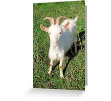 Billy 'The Goat' Greeting Card