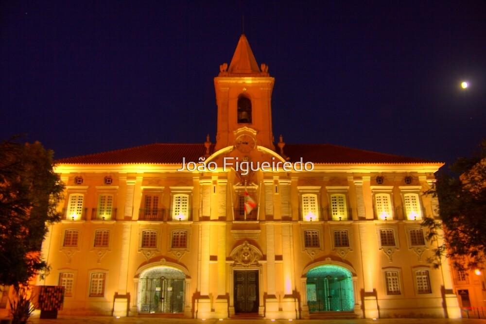 Aveiros city hall by João Figueiredo