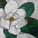 Newspaper Magnolia by Alexandra Felgate