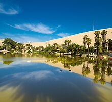 Reflections of the Oasis by Carlosms