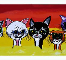 THE SPICE CATS by ROB51
