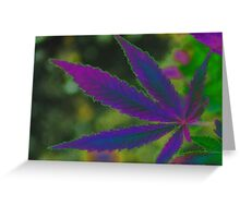 Marijuana Leaf Purple Abstract Greeting Card