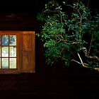 The Cottage next to my Home............ by Imi Koetz