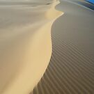 Sand Spine by Anton Gorlin
