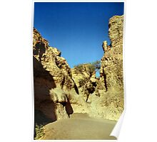 In the Sesriem Canyon, Namibia Poster