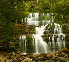 Liffey Falls Magic by Michael Matthews