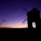 Chesterton Silhouette by Billy Hodgkins
