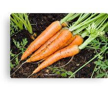 Carrots - fresh is best Canvas Print