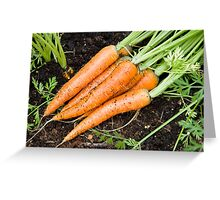 Carrots - fresh is best Greeting Card