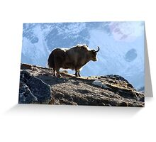 Lonely Yak Greeting Card