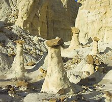 The Rimrocks, Utah by Tamas Bakos