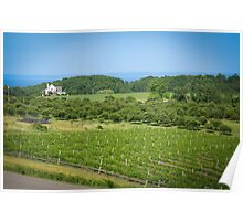 Michigan Wine Country Poster