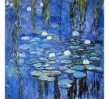 water lilies a la Monet Photographic Print