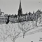Edinburgh skyline by Peter Lusby Taylor