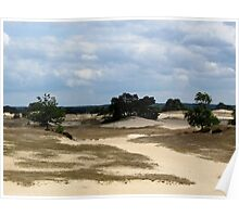 Sand dunes in the Netherlands Poster