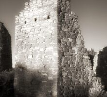 Hovenweep Castle Sticker