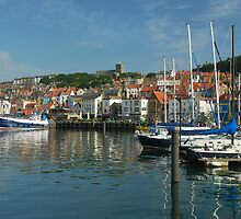 Harbour in morning light by StephenRB