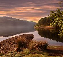 Misty by Nigel Hatton, Derwent Digital Imaging