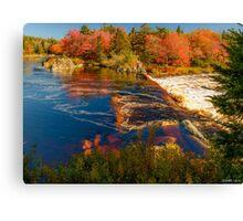 Liscombe Falls Canvas Print