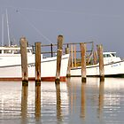 Boats Of The Chesapeake Bay by Monte Morton