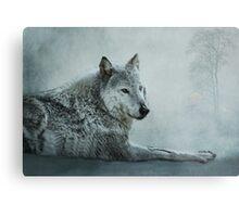 le loup gris Metal Print