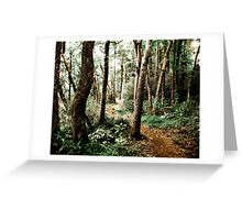 A Path Of Light Greeting Card
