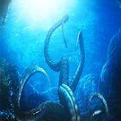 The Kraken by Shane Gallagher