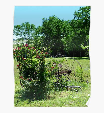 Rural Texas Poster