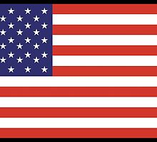American Flag, Stars & Stripes, Pure & Simple, America, USA, on BLACK by TOM HILL - Designer