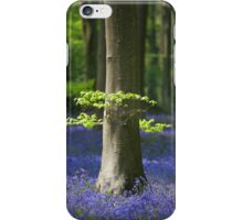 Bluebell woodland scene for your iPhone iPhone Case/Skin