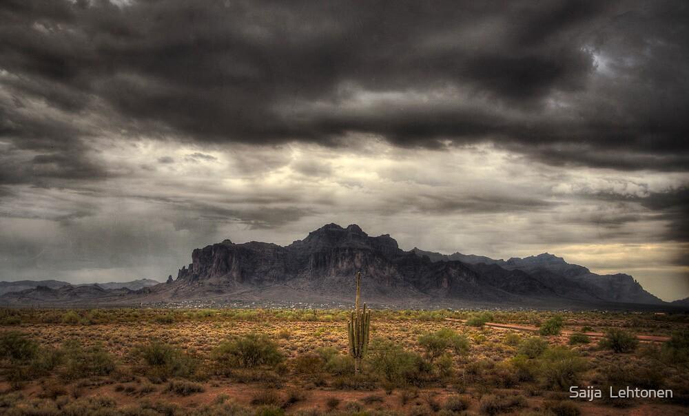 Desert Rain  by Saija  Lehtonen