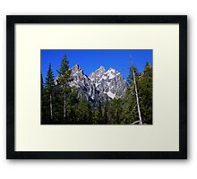 Cathedral Group Framed Print