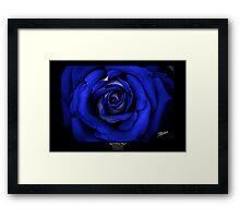 April Rose Blue Framed Print