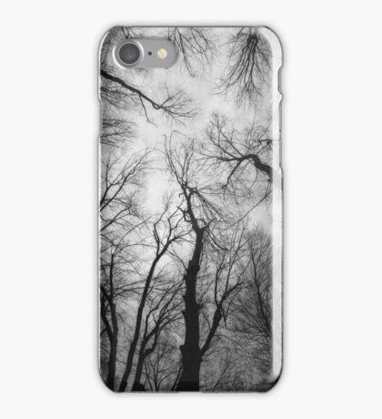 Vertigo 2 iPhone Case/Skin