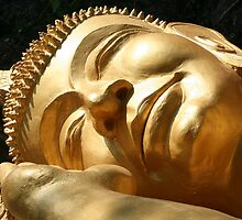 Sleeping Buddha by KelseyGallery