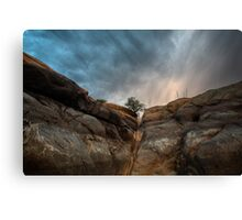 From The Bottom Up Canvas Print
