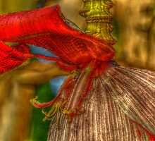 quest for the light - banana-tree flower, by Wieslaw Jan Syposz