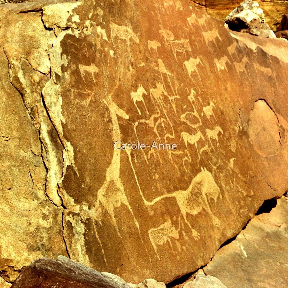 Twyfelfontein Rock Engravings by Carole-Anne