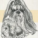 Shih Tzu Father & Son by BarbBarcikKeith