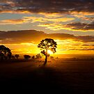 Winter Sunset by Greg Thomas